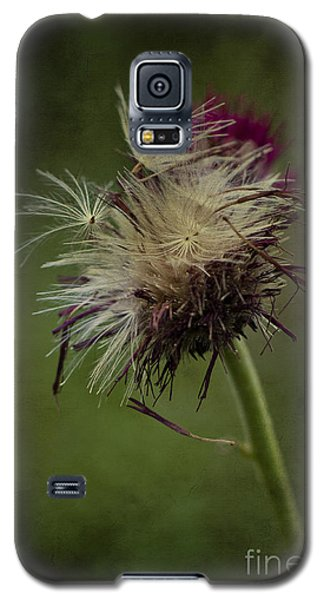 Galaxy S5 Case featuring the photograph Ready To Fly Away... by Clare Bambers