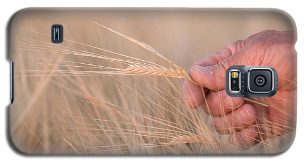 Ready To Harvest Galaxy S5 Case