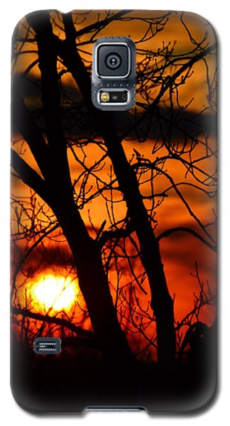 Red And Gold Galaxy S5 Case by Bonnie Myszka