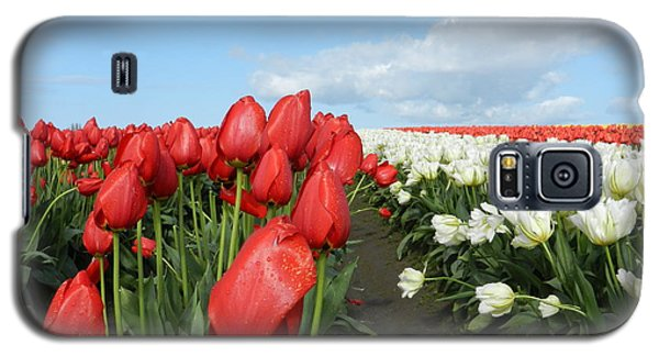 Galaxy S5 Case featuring the photograph Red And White Tulips by Karen Molenaar Terrell