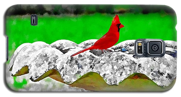 Red Bird In Bath Galaxy S5 Case by Tom Culver