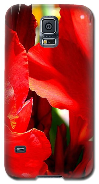 Galaxy S5 Case featuring the photograph Red Canna Portrait by M Diane Bonaparte