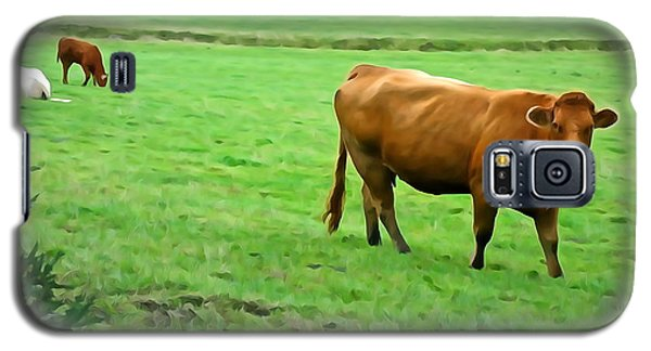Galaxy S5 Case featuring the photograph Red Cow by Charlie and Norma Brock