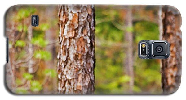 Red Headed Woodpecker On The Pine Savanna Galaxy S5 Case