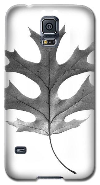 Red Oak Leaf Galaxy S5 Case