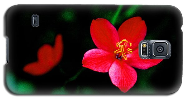 Red Petaled Dream Galaxy S5 Case