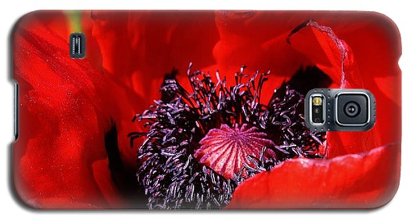Galaxy S5 Case featuring the photograph Red Poppy Close Up by Bruce Bley