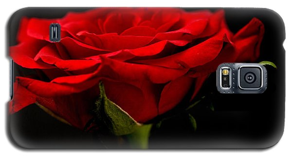 Galaxy S5 Case featuring the photograph Red Rose by Steve Purnell