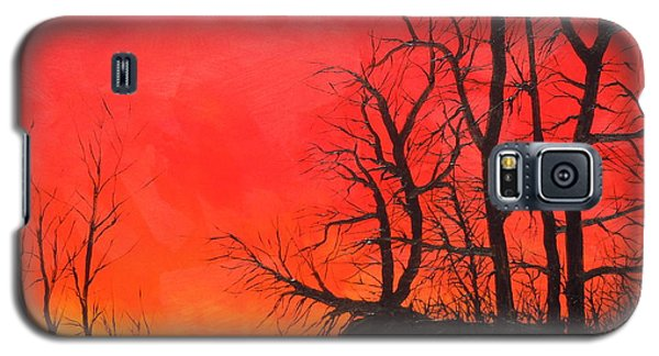 Galaxy S5 Case featuring the painting Red Sky  by Dan Whittemore