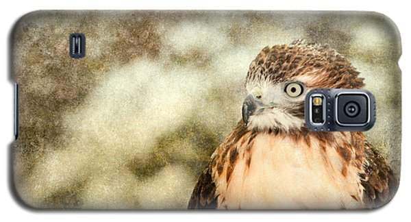 Red Tail Galaxy S5 Case