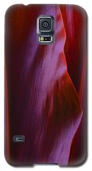 Red Ti Leaves - Natures Abstract Shapes Galaxy S5 Case by Kerri Ligatich
