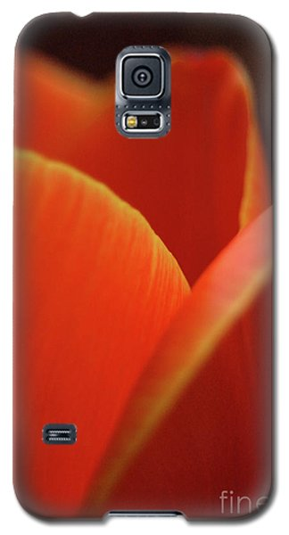 Red Tulip Galaxy S5 Case by Jeannette Hunt