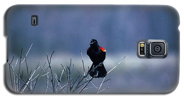 Galaxy S5 Case featuring the photograph Red-wings Morning Call 10o by Gerry Gantt