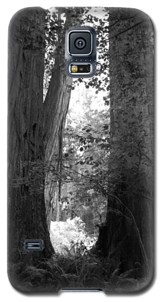 Redwood Pair Galaxy S5 Case