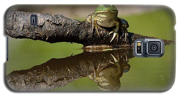 Reflecktafrog Galaxy S5 Case by Susan Capuano