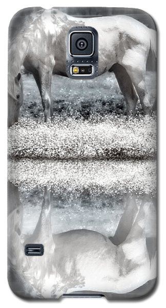 Galaxy S5 Case featuring the digital art Reflecting Dreams by Mary Almond