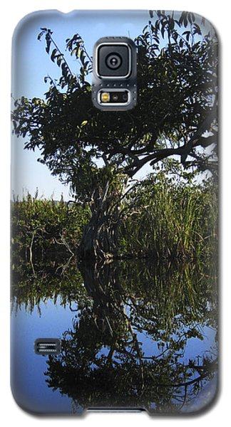 Galaxy S5 Case featuring the photograph Reflection Of Arched Branches by Anne Mott