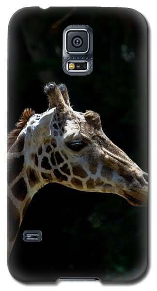 Reflection Time Galaxy S5 Case by Roger Mullenhour