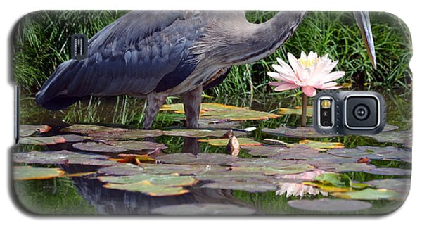 Reflections At Lilly Pond Galaxy S5 Case