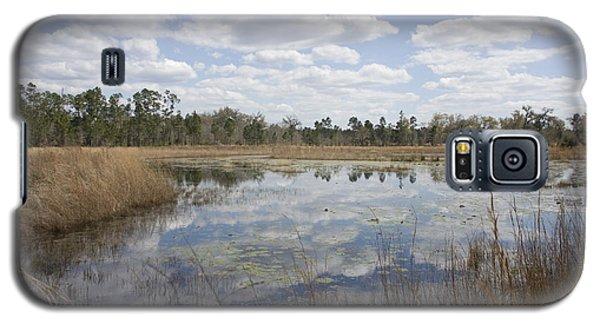 Reflections Galaxy S5 Case by Lynn Palmer