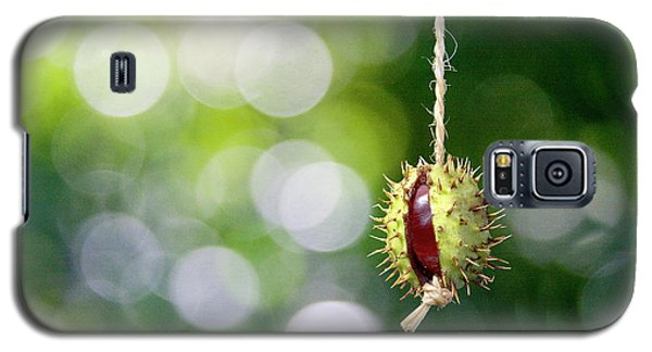 Galaxy S5 Case featuring the photograph Retro Conker  by Richard Piper