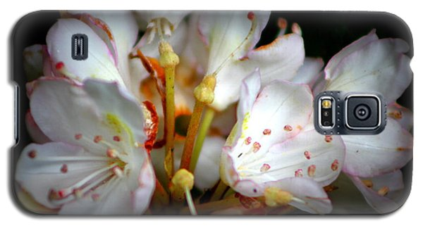 Rhododendron Explosion Galaxy S5 Case