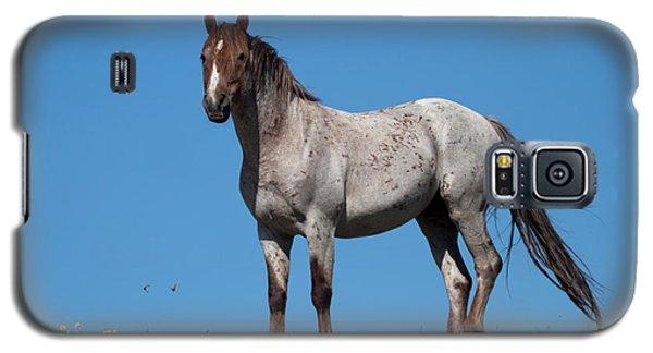 Ridgetop Mustang Galaxy S5 Case