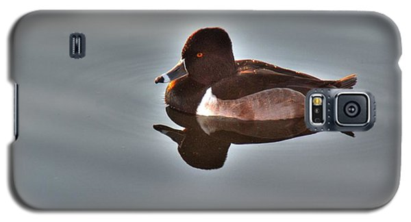 Galaxy S5 Case featuring the photograph Ring-necked Duck by Tam Ryan