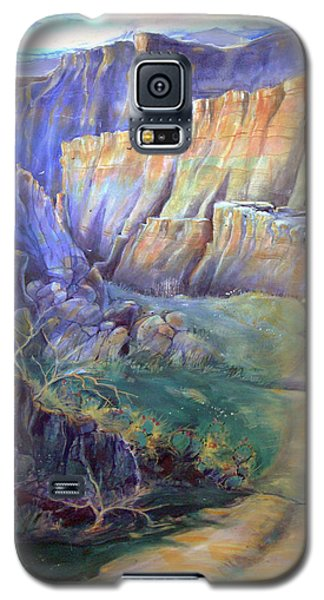 Galaxy S5 Case featuring the painting Road To Rainbow Gulch by Gertrude Palmer