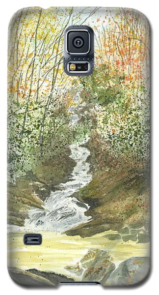 Galaxy S5 Case featuring the painting Roaring Fork Falls  by Joel Deutsch