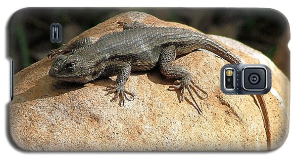 Galaxy S5 Case featuring the photograph Rock Lizard by Wendy McKennon