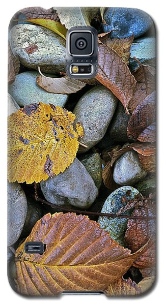 Galaxy S5 Case featuring the photograph Rocks And Leaves by Bill Owen