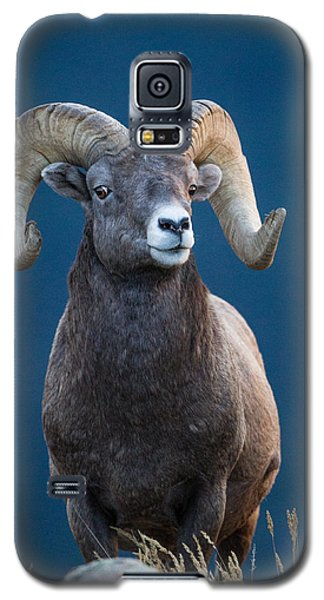 Rocky Mountain Big Horn Galaxy S5 Case