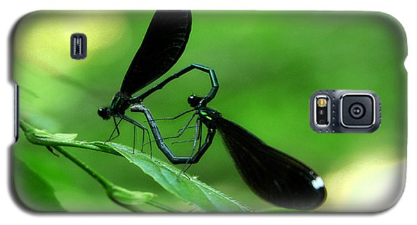 Galaxy S5 Case featuring the photograph Romantic Damselflies by Emanuel Tanjala