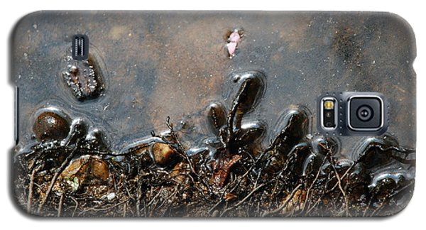 Galaxy S5 Case featuring the photograph Roots In Water by Kay Lovingood