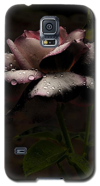 Rose After Dark Galaxy S5 Case by Barbara Middleton