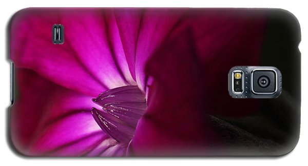 Rose Campion  Galaxy S5 Case by Andrew Pacheco