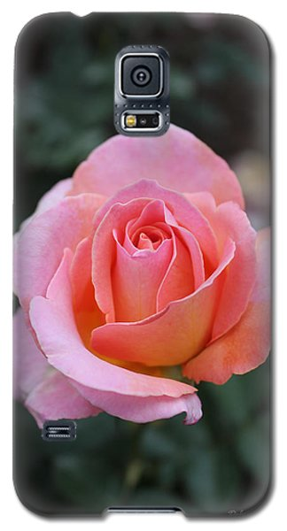 Rose Garden Galaxy S5 Case