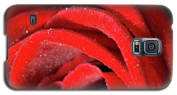 Rose Galaxy S5 Case by Joerg Lingnau