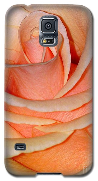 Rose Galaxy S5 Case by Sylvie Leandre