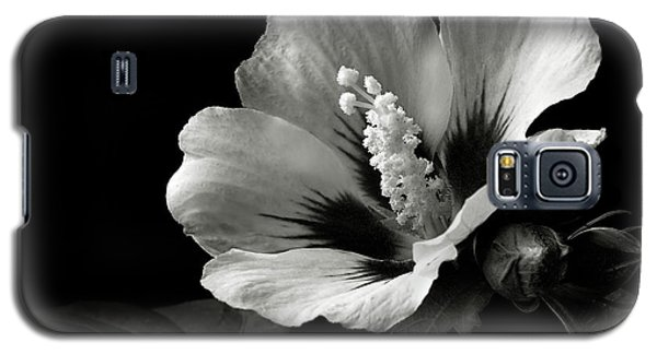 Rose Of Sharon In Black And White Galaxy S5 Case