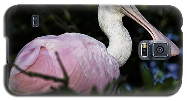 Roseate Spoonbill Galaxy S5 Case by Fran Gallogly
