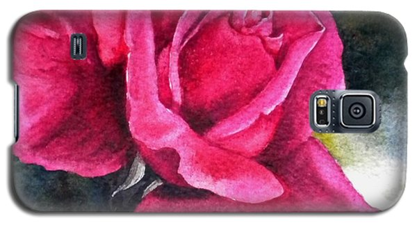 Galaxy S5 Case featuring the painting Rosenberger Rosa Family Rosaceae by Sandra Phryce-Jones