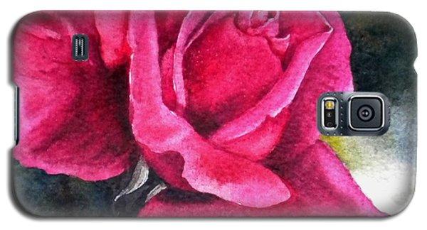 Rosenberger Rosa Family Rosaceae Galaxy S5 Case