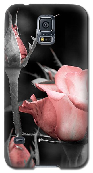 Roses In Pink And Gray Galaxy S5 Case