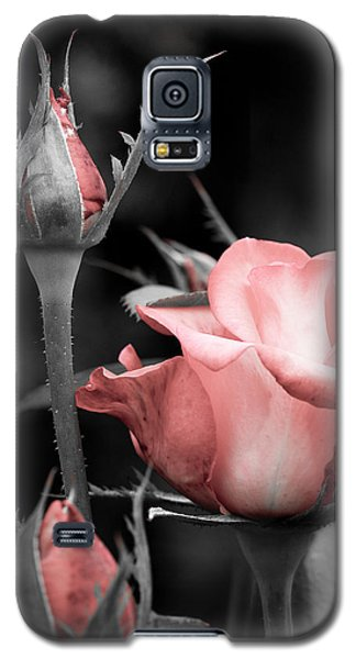Galaxy S5 Case featuring the photograph Roses In Pink And Gray by Michelle Joseph-Long