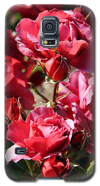 Galaxy S5 Case featuring the photograph Roses by Kerri Ligatich