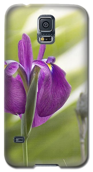 Purple Japanese Water Iris Galaxy S5 Case