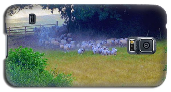 Galaxy S5 Case featuring the photograph Running Of The Sheep by Rdr Creative