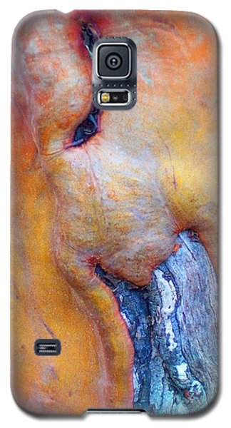 Galaxy S5 Case featuring the digital art Sacred by Richard Laeton